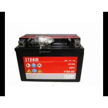 FIAMM 7904483 Аккумуляторная батарея рус 8Ah 180/87/105 FTX9-BS moto