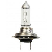 Лампа галогенная +50% More Light H7 12V 55W TESLA / B30701